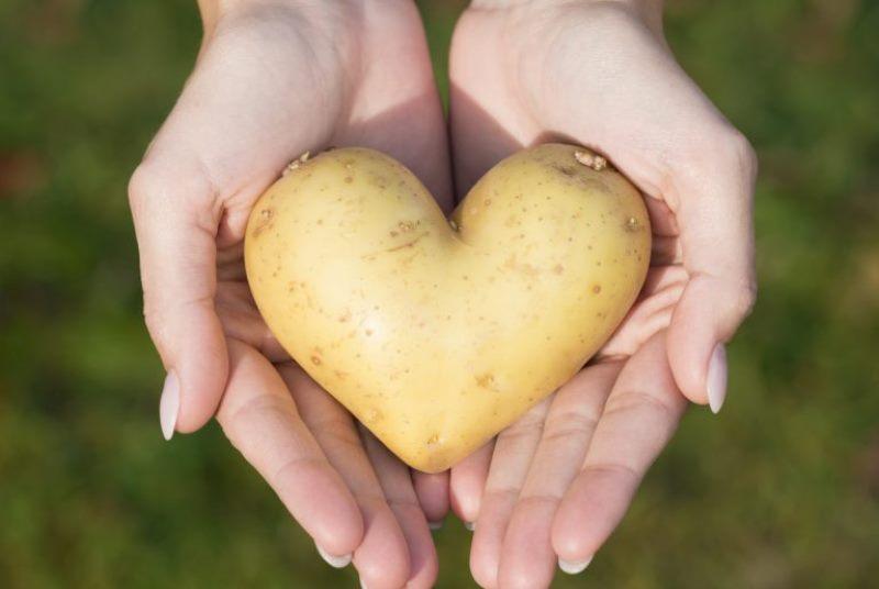 картофель для сердца