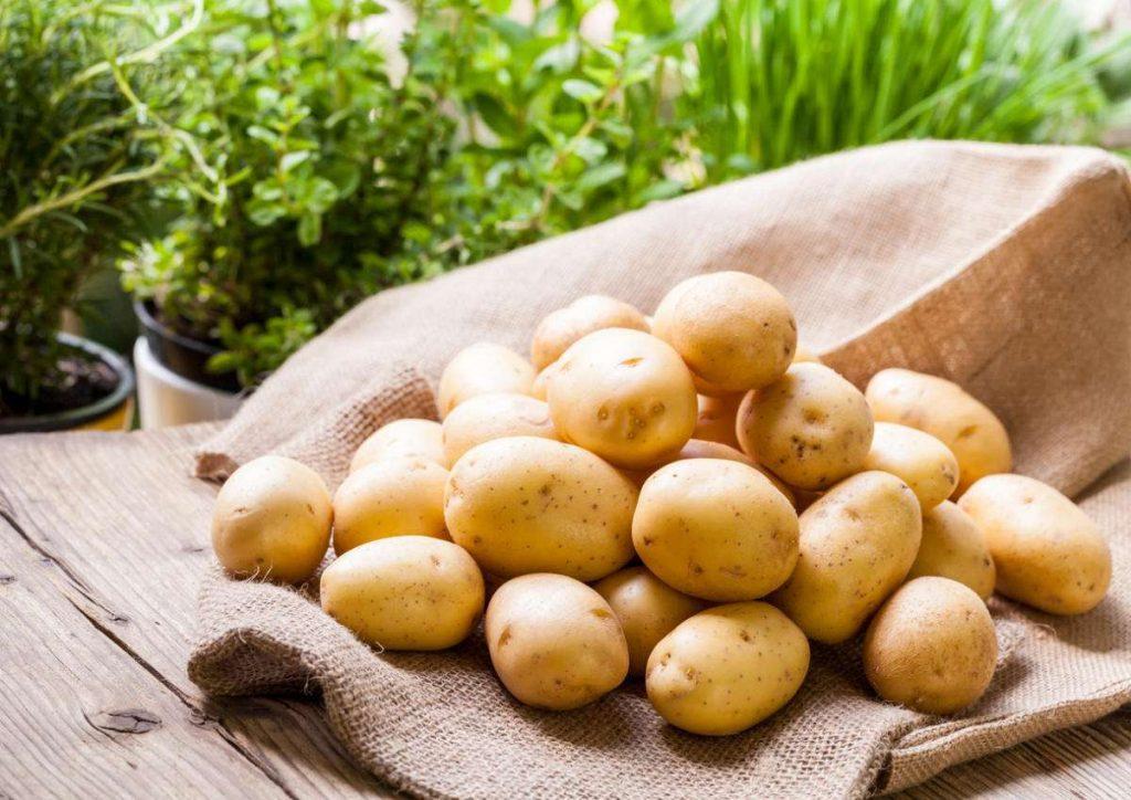 картофель польза