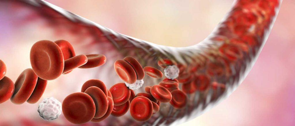 быстрая кровь в венах