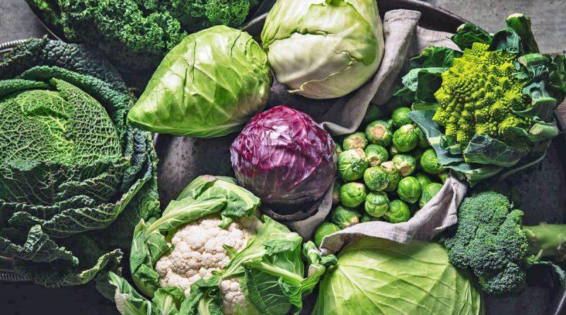 польза и виды капусты