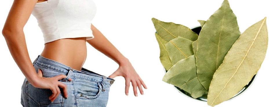 лавровый лист для похудения